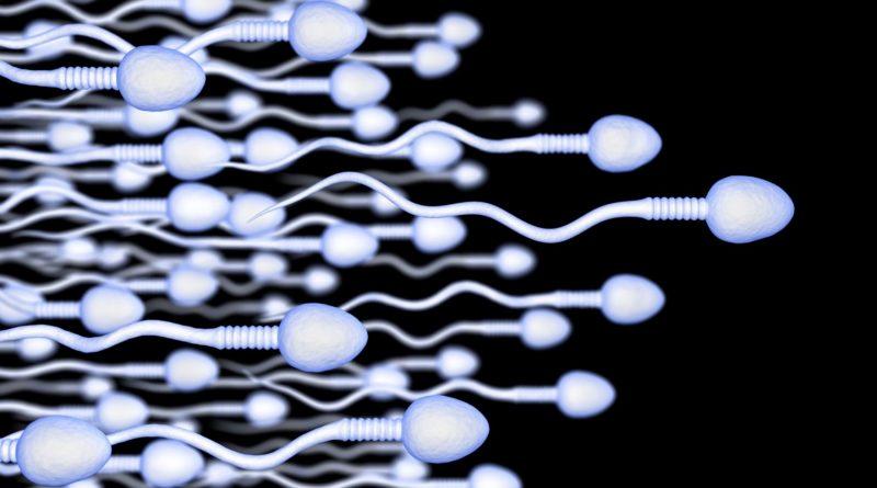 sperma ruchliwość plemników